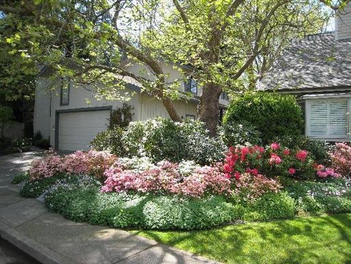 Huizenruil in  Verenigde Staten,Larkspur, California,USA - San Francisco, 6m, N, 2 Story Home,Home Exchange Listing Image