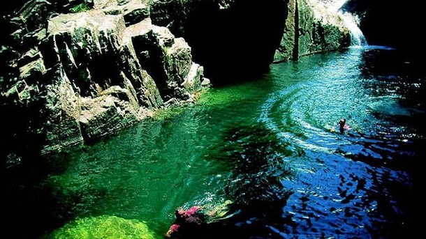 Home exchange in,Australia,MACKAY,Access to Finch Hatton Gorge, swimming & trails