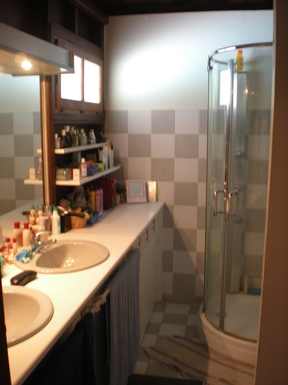 BoligBytte til,Martinique,Diamant, 1km, N,First bathroom (from master bedroom)