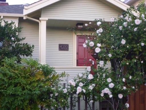 San Francisco area Craftsman
