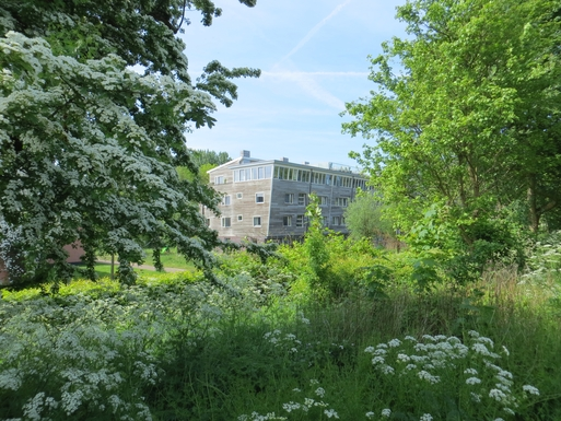 Boligbytte i  Nederland,Amsterdam, NH,Appartment, 5 rooms, two bedrooms, 125 m2,Home Exchange & House Swap Listing Image
