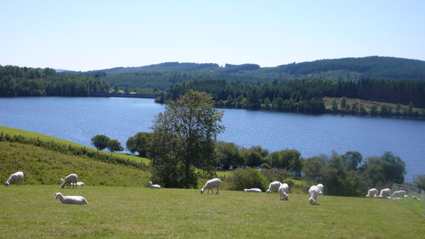 BoligBytte til,France,royere de vassiviere,The Millevaches Plateau is mainly a wood & lake ar