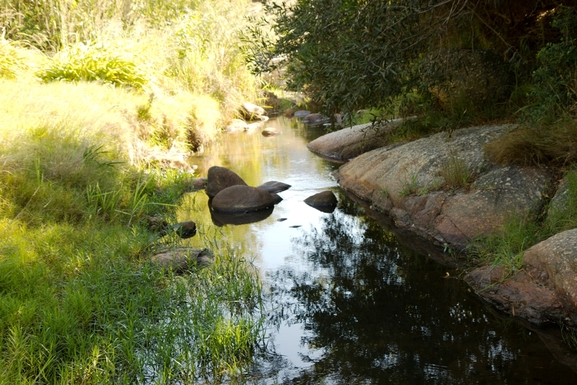 BoligBytte til,South Africa,Hout Bay / Cape Town,Our river in the garden