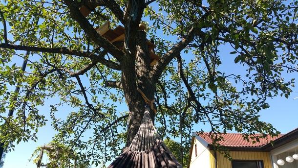 BoligBytte til,Sweden,Stockholm,Little treehouse seen from hammock