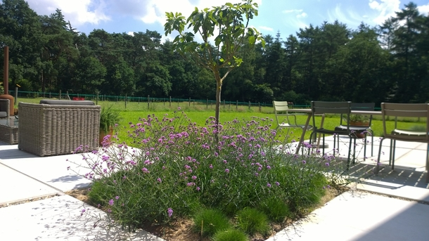 BoligBytte til,Netherlands,Austerlitz , 60km SE of Amsterdam,Terrace with view on the meadow