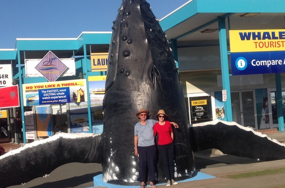 Home exchange in,Australia,Hervey Bay,Giant whale outside Whale Watching facility