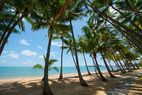 Home exchange in,Australia,PALM COVE,Palm-fringed beach in front of Peppers