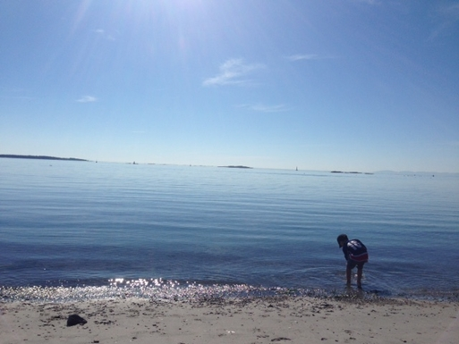 Esquimalt Beach - 7 minute drive away
