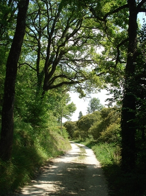 BoligBytte til,France,Angouleme, km, 0,great walks in peaceful countryside