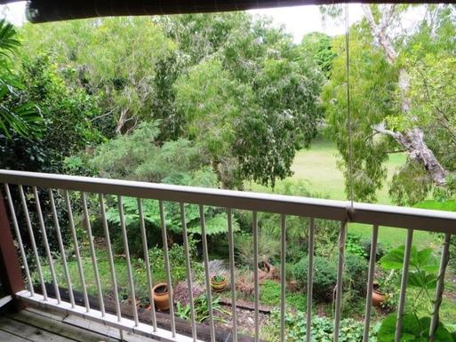 Home exchange in,Australia,Sunshine Beach,Garden with bird bath, frogpond adjoins local park