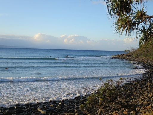 Home exchange in,Australia,Sunshine Beach,Catching a wave, Tee Tree Bay Noosa National Park