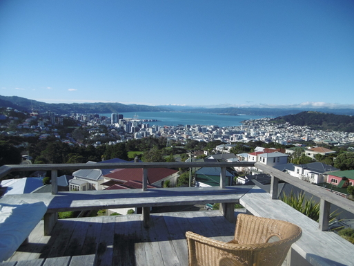 View over Wellington city and harbour.