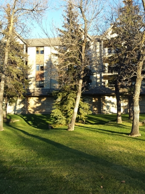 Bostadsbyte i Kanada,Regina, Saskatchewan,Modern 2 bedroom condo near park,Home Exchange Listing Image