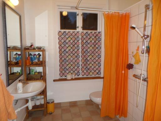 BoligBytte til,Norway,Ulvik,Bathroom downstairs