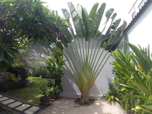 Home exchange in,Indonesia,Legian,Eingangsberich