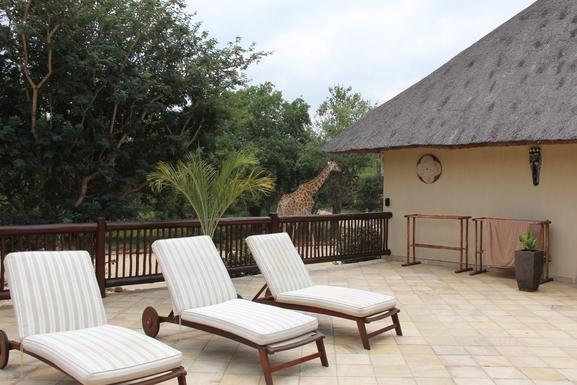 BoligBytte til,South Africa,Hoedspruit,Terrace, sunbeds and a giraf
