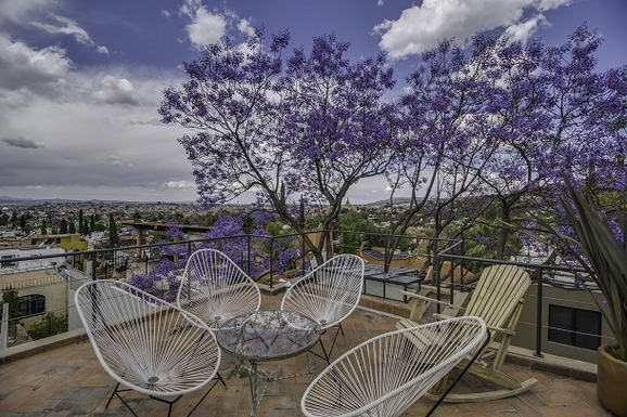 BoligBytte til,Mexico,San Miguel de Allende,Landscaped Rooftop Terrace with table & chairs