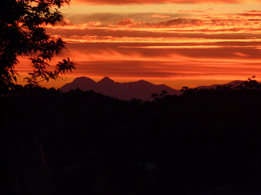 Home exchange in,Australia,Tamborine Mountain,View towards the west from the deck