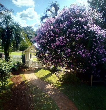 Home exchange in,Australia,Tamborine Mountain,Lookig towards the road from the north deck