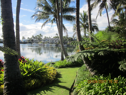 Home exchange in,Australia,TWEED HEADS,Our gardens. We don't do the maintenance