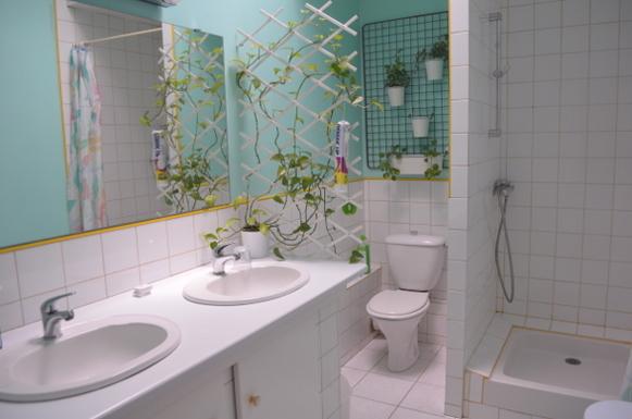 BoligBytte til,France,smarves,salle de bain étage
