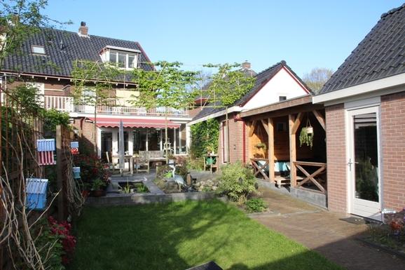 Sunny Back yard