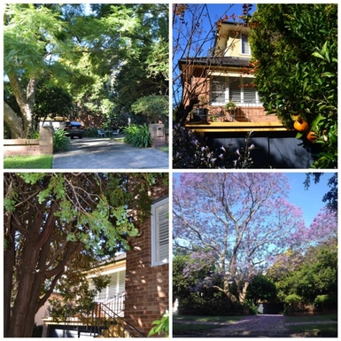 Home exchange in,Australia,Balgowlah Heights, Sydney,Leafy Approach