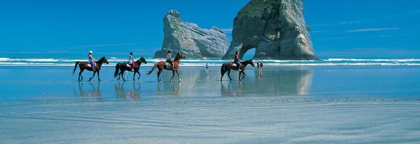 BoligBytte til,New Zealand,Nelson,Horse trekking in Golden Bay