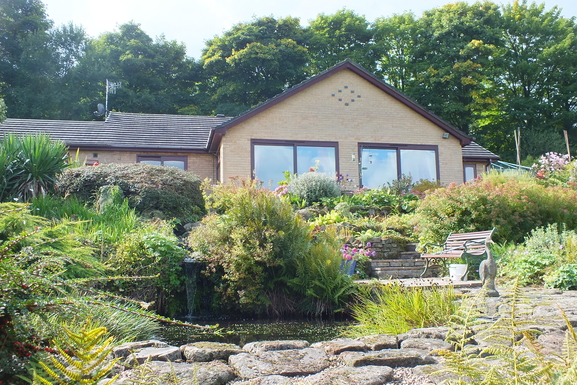 ,Home exchange country Ireland|Wexford  Town