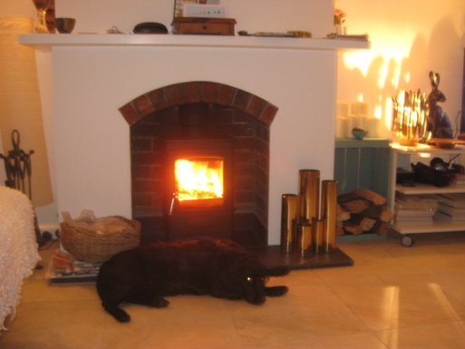 Home exchange in,Jersey,Jersey,Our dog Poppy enjoying the wood burning stove