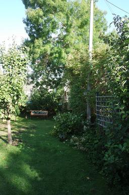 Home exchange in,United Kingdom,Hexham,Side Garden