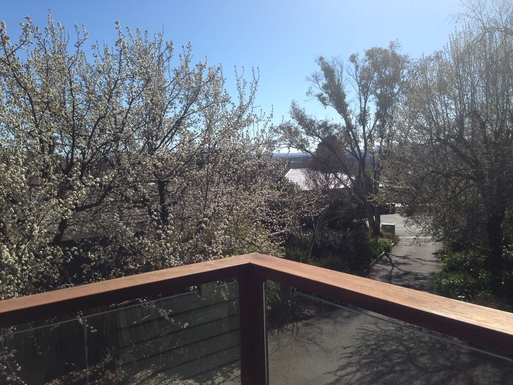 Home exchange in,Australia,CHIFLEY,Down the drive way on a winter morning