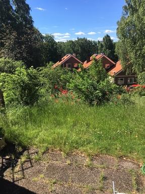 BoligBytte til,Sweden,Stockholm, 0k, S,Garden