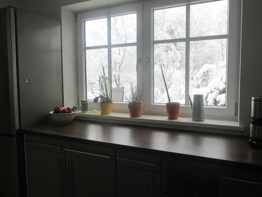 Home exchange in,Germany,Bergen,Winterview from the kitchen