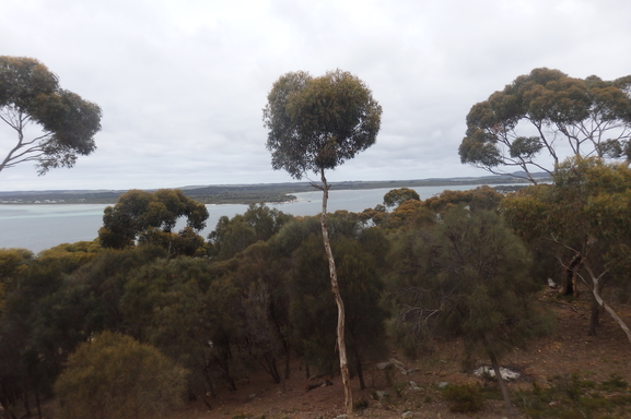 BoligBytte til,Australia,American River,View from Deck looking into Eastern Cove