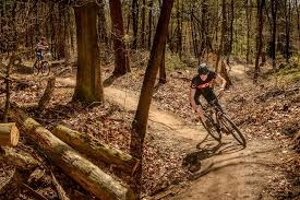 BoligBytte til,Netherlands,Amsterdam, 30m, S,There are several MTB trails around Driebergen