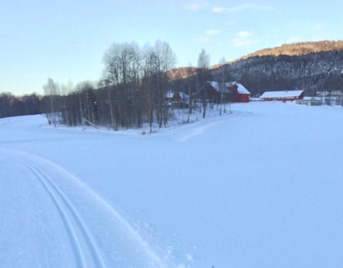BoligBytte til,Norway,Nittedal,Ski track right outside the door during winter