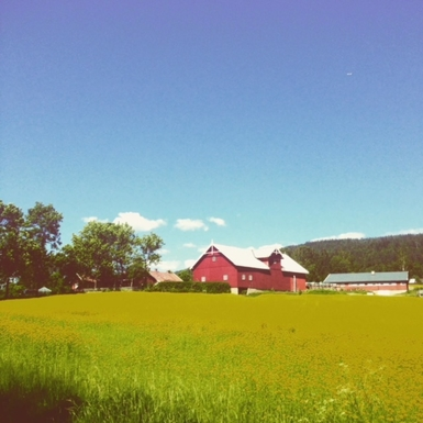 BoligBytte til,Norway,Nittedal,The farm on a sunny Summer day