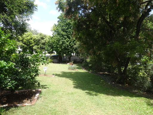 Home exchange in,Australia,WINDSOR,Looking into the back garden from inside house.