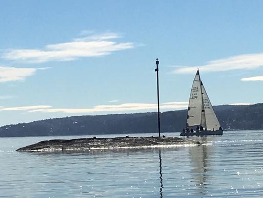 BoligBytte til,Norway,Oslo, 0k, W,Bygdøy. A lovely beach, 15 min by car from house