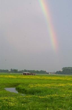 BoligBytte til,Netherlands,Amersfoort (Amsterdam 50N), 0k,,Arkenheem polder (10 minutes by bicycle)