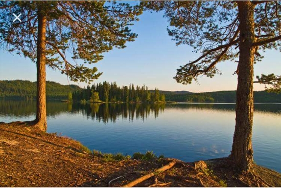 BoligBytte til,Norway,OSLO,The forested and hilly areas surrounding Oslo