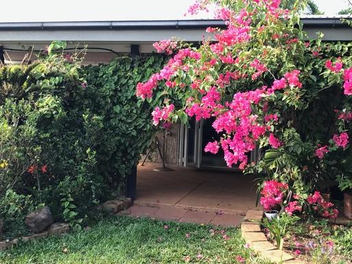 Home exchange in,Australia,Cairns,Backyard looking towards patio
