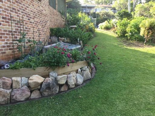Home exchange in,Australia,Coffs Harbour,We grow some seasonal veg and many herbs