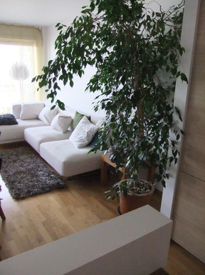 Home Exchange In Norway Oslo Comfortable Sunny Flat Nearby The