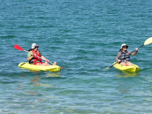 BoligBytte til,Mexico,La Paz,Paddle our kayaks in the Sea of Cortez!