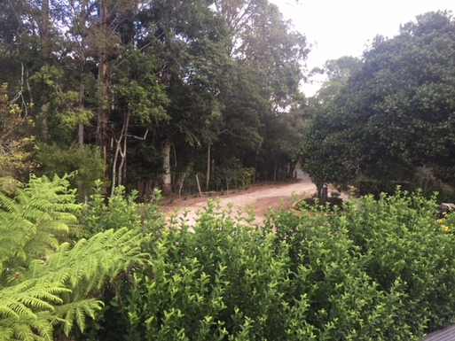 Home exchange in,Australia,Bellingen,drive way entrance
