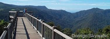 Home exchange in,Australia,Bellingen,dorrigo mountain rainforest walk, 20min drive
