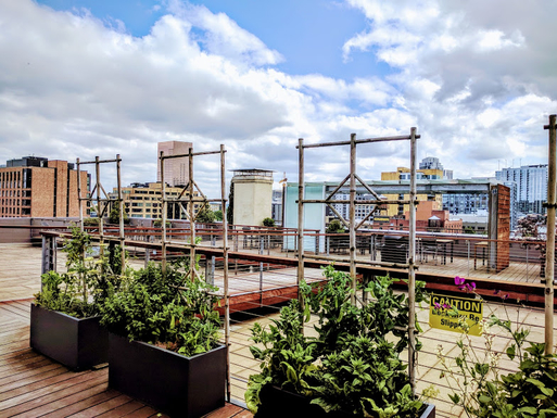 Home exchange in,United States,Portland,View from rooftop looking downtown