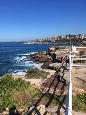 Home exchange in,Australia,RANDWICK,clifftop walk from coogee to bondi